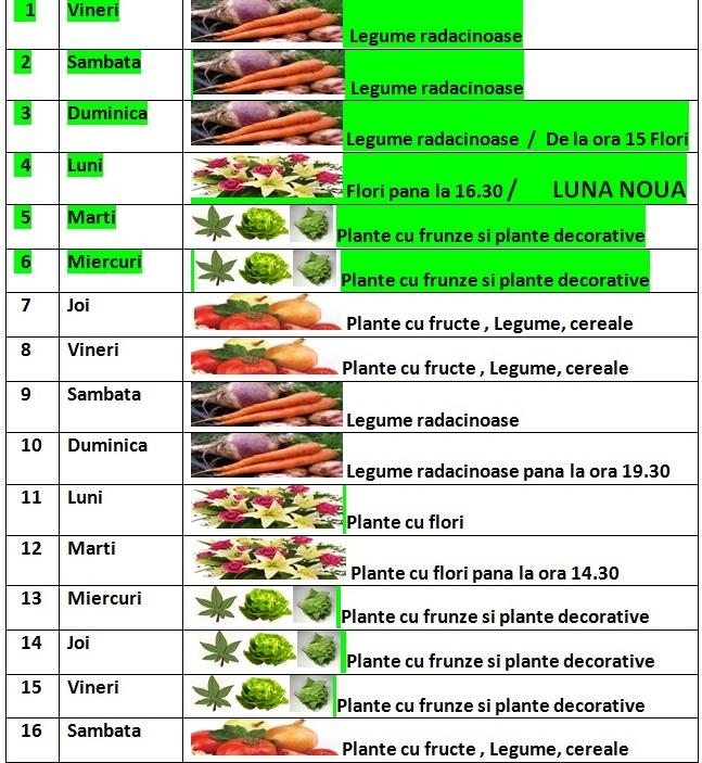 Calendarul_lunii_noiembrie_2013_pentru_gradinarit