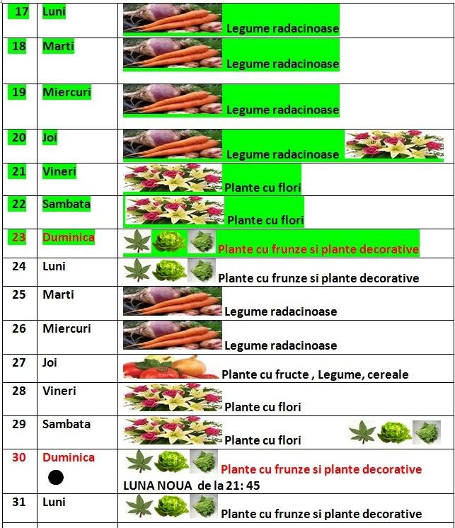 Calendarul_lunii_martie_2014_pentru_gradina_2