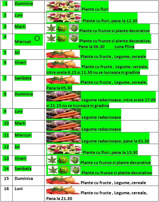 Calendarul_lunii_februarie_2015_1_in_gradina