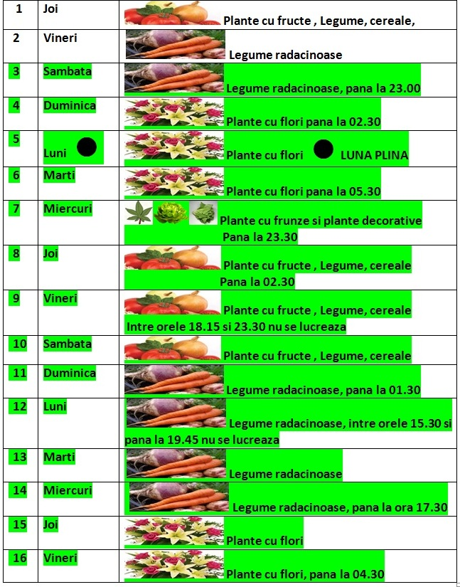 Calendarul_lunii_ianuarie_2015_1_pentru gradinarit