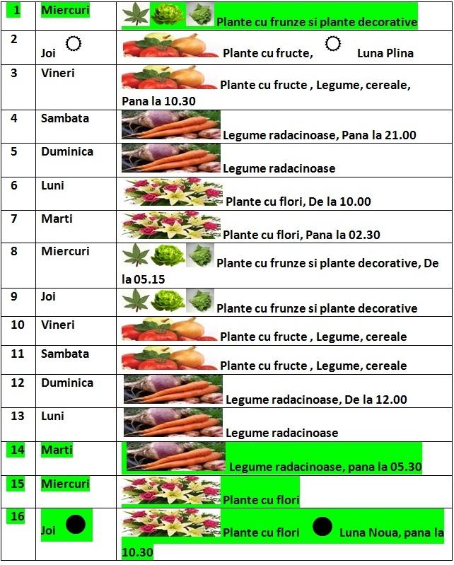 Calendarul_lunii_iulie_2015_1_pentru_gradina