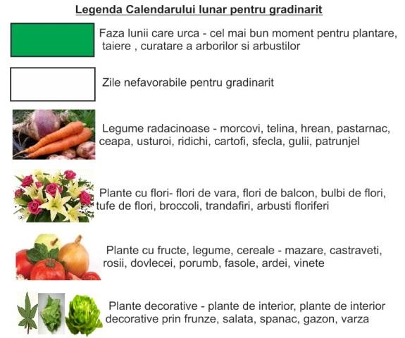 Legenda-calendarului-lunar-pentru-gradina